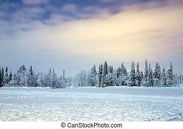 Winter landscape at night in Kiruna Lapland Sweden at Night ...