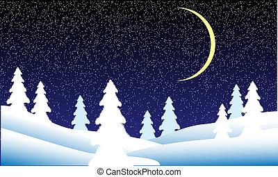 Winter landscape at night