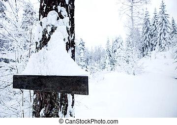 Winter Landscape - Blank Sign