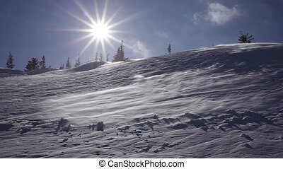 Winter landscape. Cold day, with snow shining in the sun.