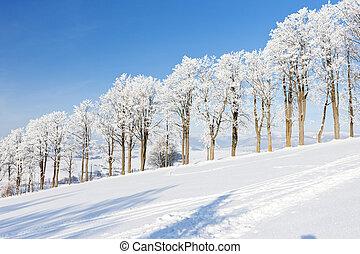 winter landscape, Czech Republic