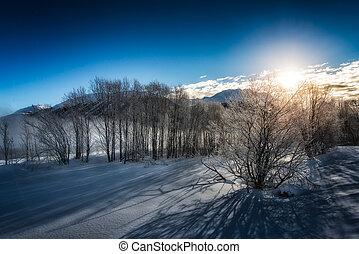 Winter landscape during sunrise