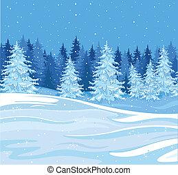 Winter landscape - Snowfall over a fir tree forest