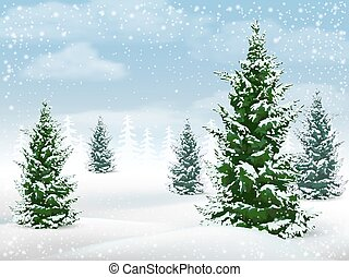 Winter landscape fir tree