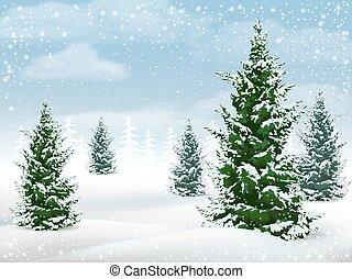 Winter landscape fir tree
