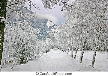 Winter landscape from Austria