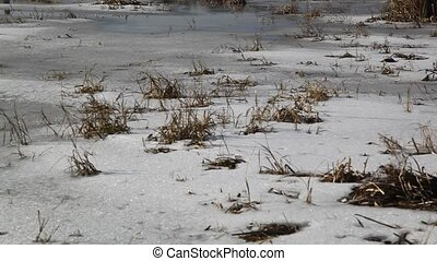 Winter landscape. Frost on the grass. HD video