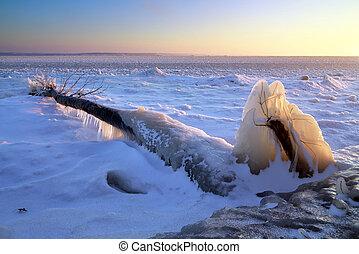 Winter landscape. Frozen tree on the shore of a lake. Compositio