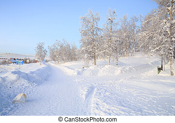 Winter Landscape Garden - Winter Landscape of Kiruna Garden ...