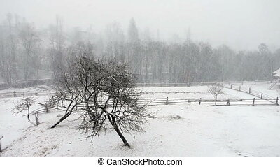 Winter landscape. Heavy snowfall.