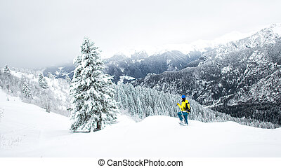 Winter landscape in a solitary snowshoeing on the Alps