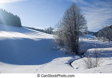 Winter Landscape in Austria
