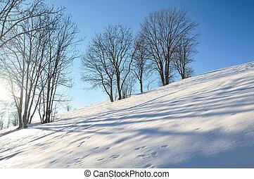 winter, landscape in mountain