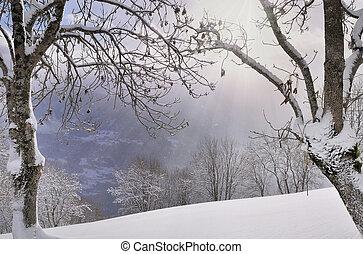 winter landscape in mountain
