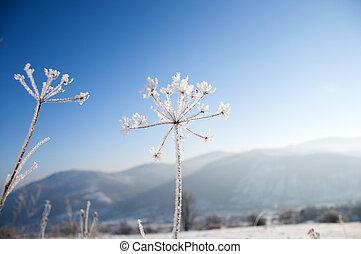 Winter landscape in mountains,