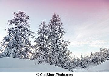 Winter landscape in mountains Julian Alps