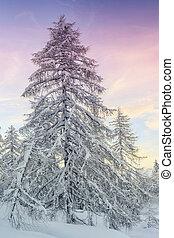 Winter landscape in mountains Julian Alps, Slovenia