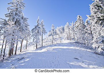 Winter landscape in the hills