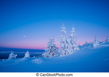 Winter landscape in the morning