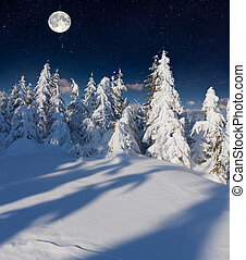 Beautiful night winter landscape in the mountains with the stars and full moon.