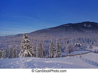 winter landscape in the village with beautiful forest scene, Romania