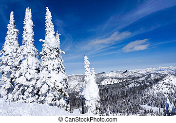 Winter Landscape in Whitefish, Montana - Winter landscape on...
