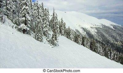 winter landscape mountain forest snow - winter landscape...