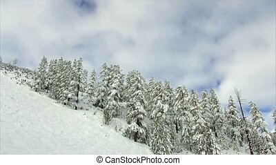 winter landscape mountain forest snow - winter landscape...