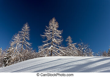 Winter landscape near Vogel ski center in mountains Julian Alps, Slovenia