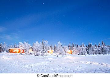 Winter landscape night