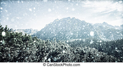 Snowfall in Tatra mountains in winter time