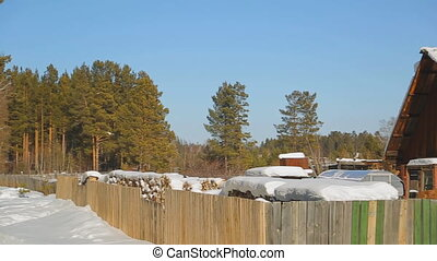 Winter landscape of houses standing in wildlife.