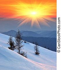 Winter landscape on a sunset. Mountains Carpathians, Ukraine