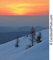 Winter landscape on a sunset. Mountains Carpathians, Ukraine...