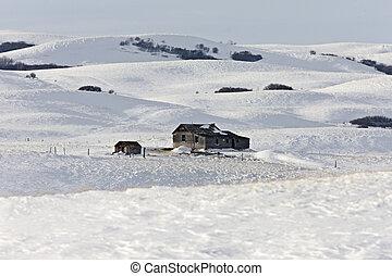 Winter Landscape Prairie