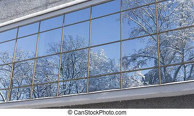 Winter landscape reflected in the window
