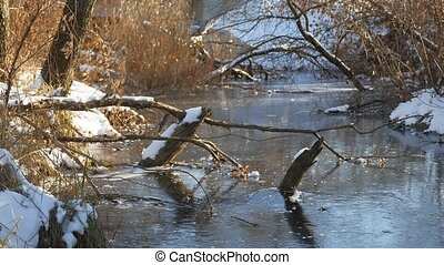 winter landscape River in forest frozen water ice nature -...