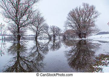 Winter landscape river Zagyva in Hungary