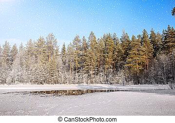 Winter landscape. Russia. Karelia