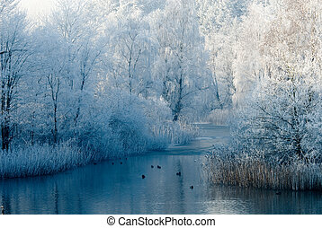winter landscape scene and frozen trees
