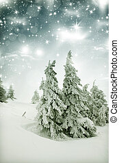 winter landscape - snow covered trees and sky with stars