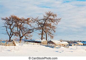Winter landscape. Solovetsky Islands, Russia