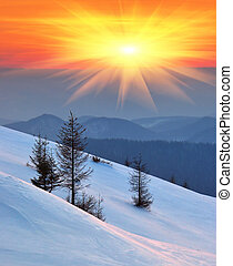 Winter landscape on a sunset. Mountains Carpathians, Ukraine...