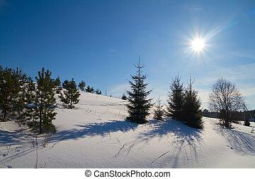winter landscape, sun