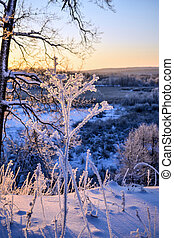 Winter landscape with a beautiful sunrise in the forest