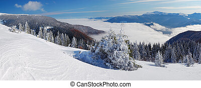 Winter landscape with a fog