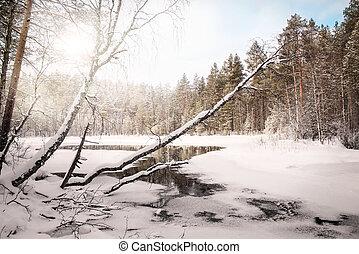 Winter landscape with a lake. Russia. Karelia