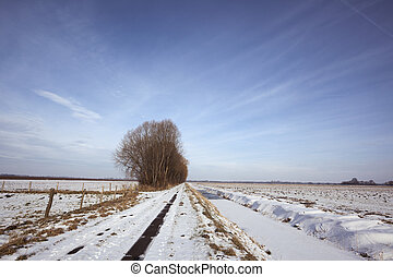 Winter landscape with biking path in snow