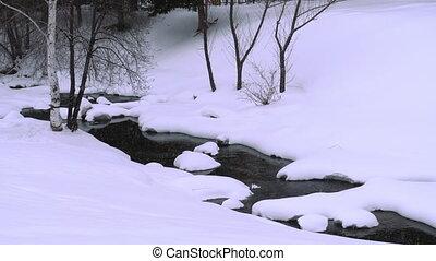 Winter landscape with birch - Winter landscape. River birch...