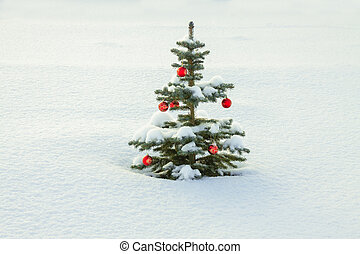winter landscape with Christmas fir tree decoration red ball and snow